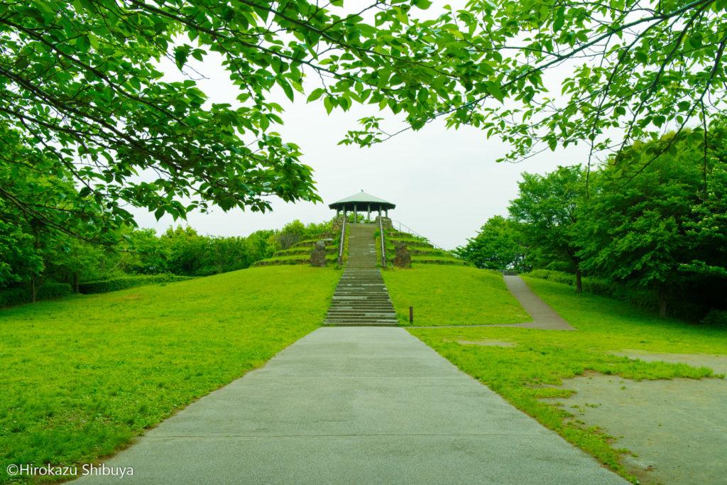 四季の森公園の展望台、この展望台からは天気が良いとスカイツリーも見えるとか