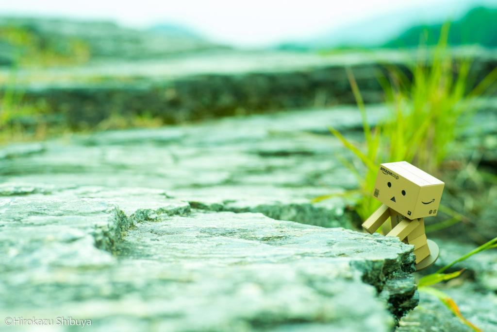 長瀞渓谷 岩畳の新緑 ダンボーと一緒に初夏を楽しむ(撮影地:埼玉県長瀞町)