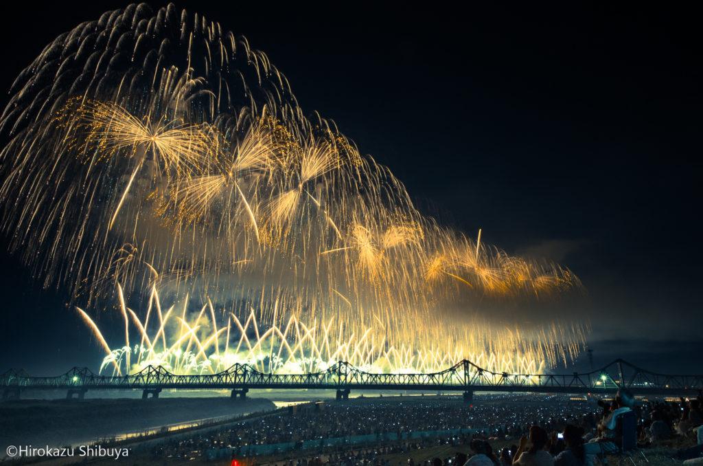 無料観覧席(長生橋下流)から撮影したフェニックス花火