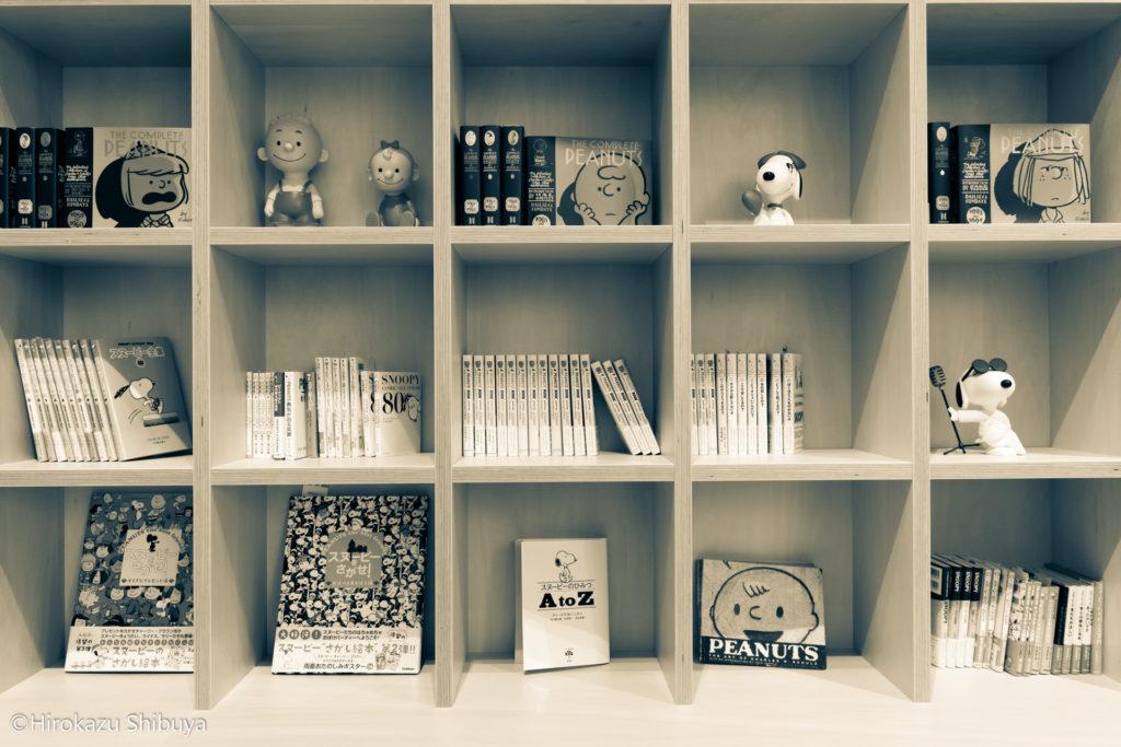 スヌーピーミュージアムの撮影スポット① エントランス付近の書棚
