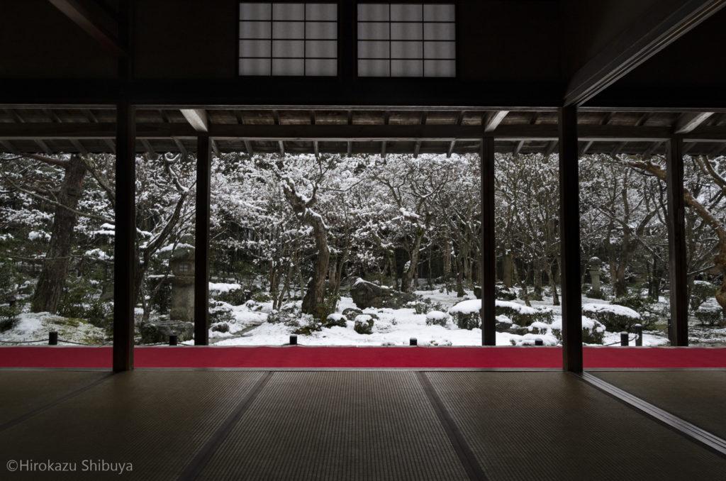 圓光寺から望む十牛の庭の雪景色(2014年2月撮影)