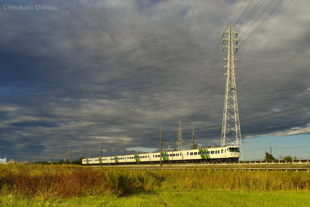 奥ヒガウラを走る185系(JR武蔵野線 東浦和駅~東川口駅)