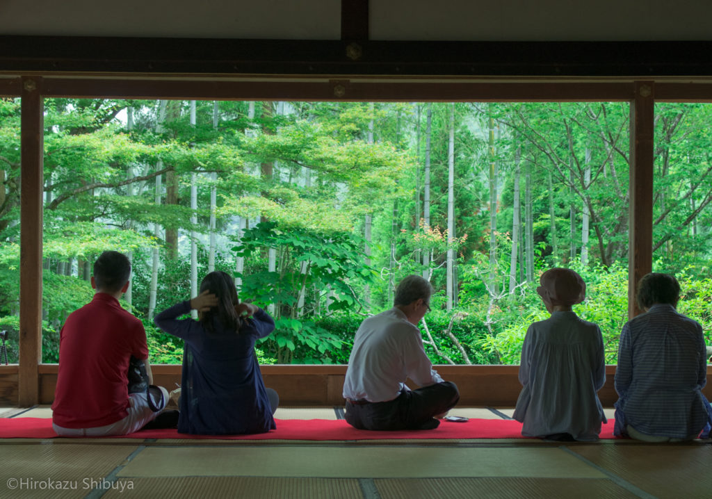 京都で写真を撮るなら押さえておきたい撮影スポット⑦ 宝泉院