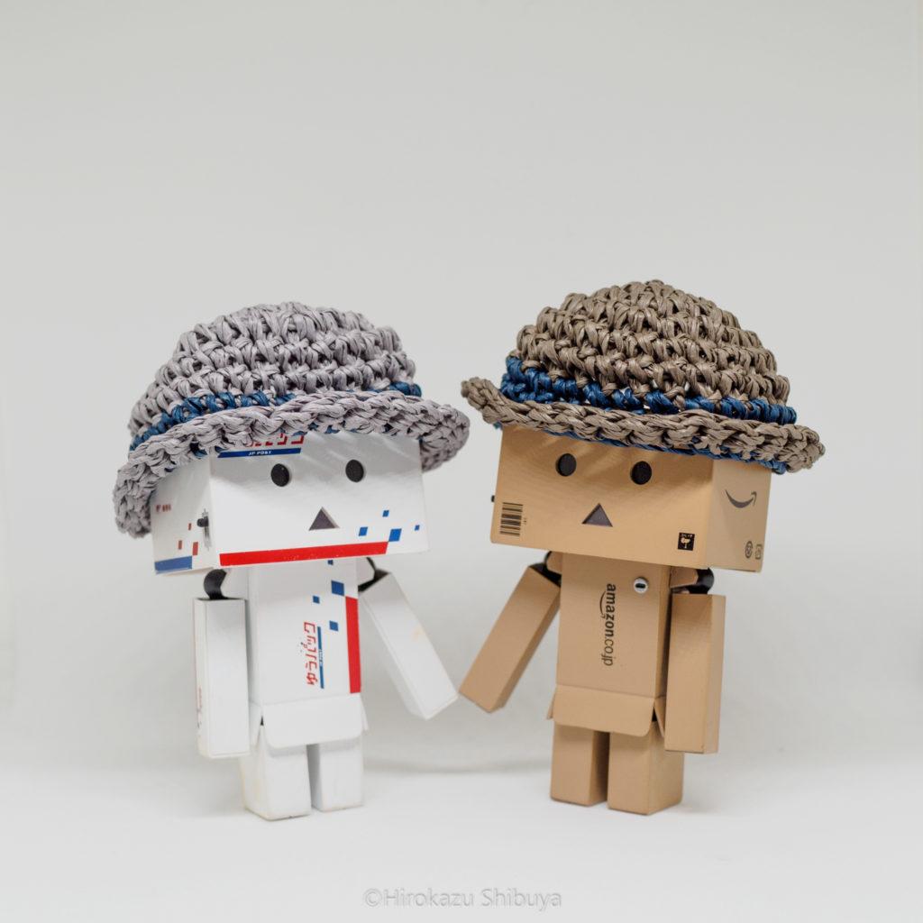 実際にダンボーに麦わら帽子をかぶせてみました…これはかわいい!